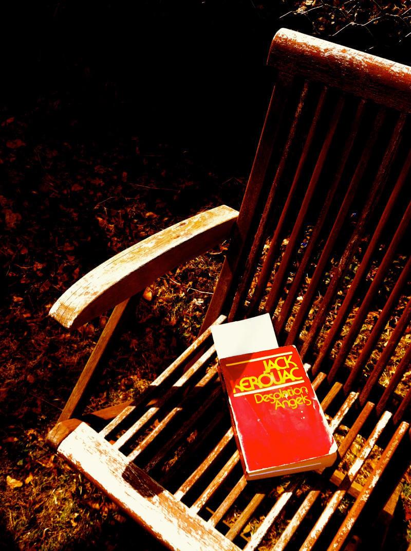 Libro Angeli di Desolazione su panchina